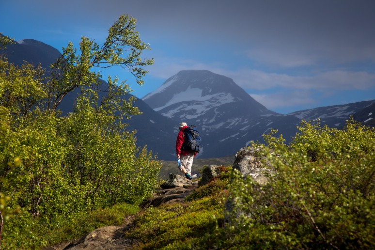 På vei inn Reindalen i Tafjordfjella. (Alle foto: Mari Valen Høihjelle)